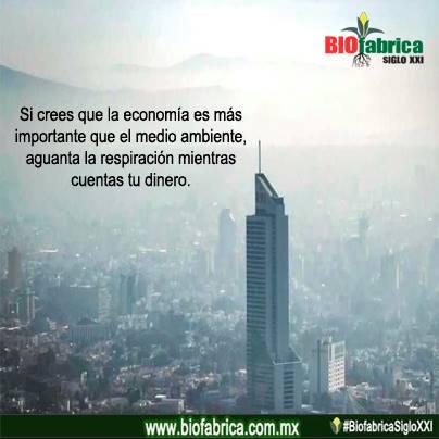 BioFdinero
