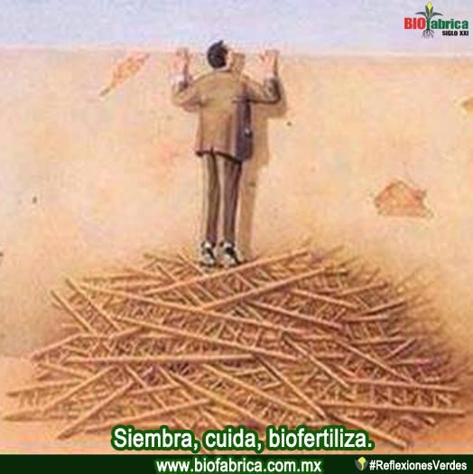 BioFesca