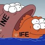 INE-IFE