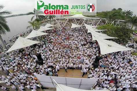 Paloma 2